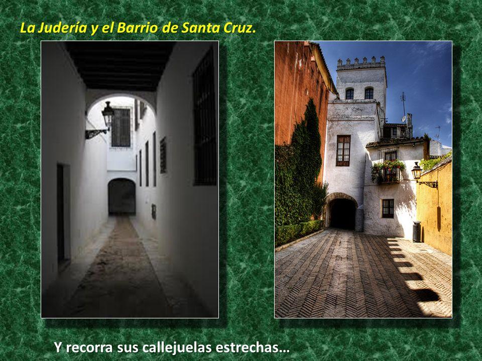 La Judería y el Barrio de Santa Cruz.