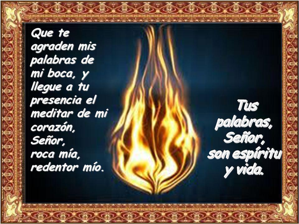 Tus palabras, Señor, son espíritu y vida.