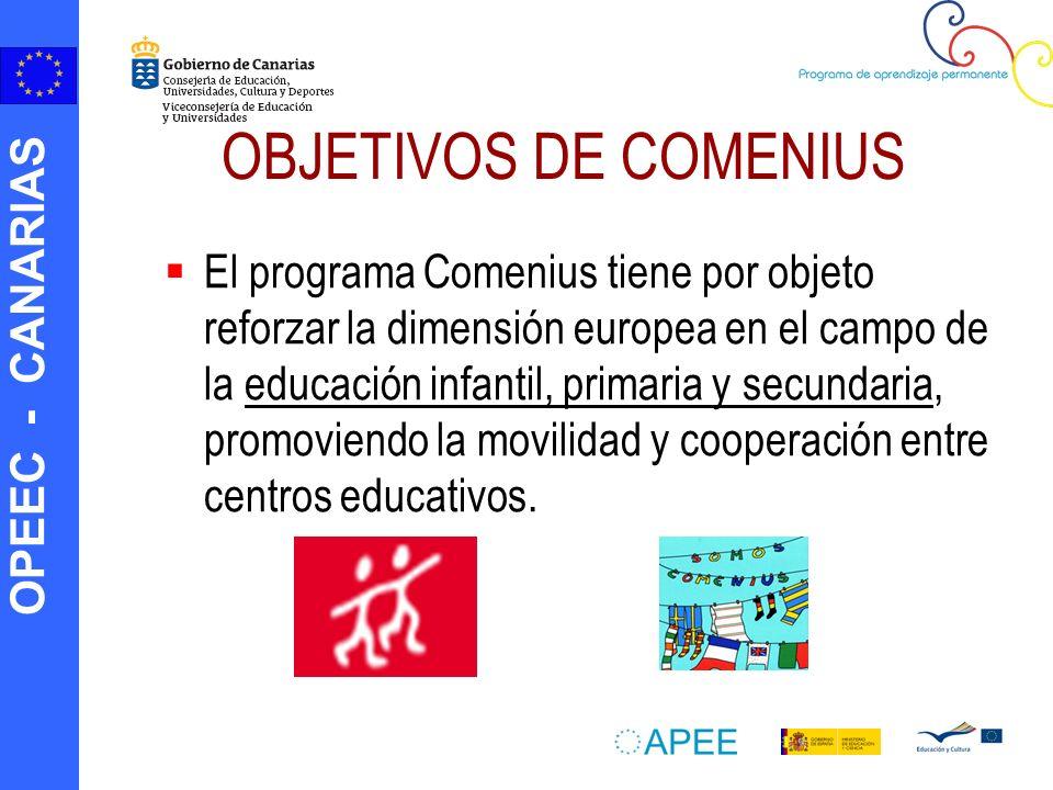 OBJETIVOS DE COMENIUS