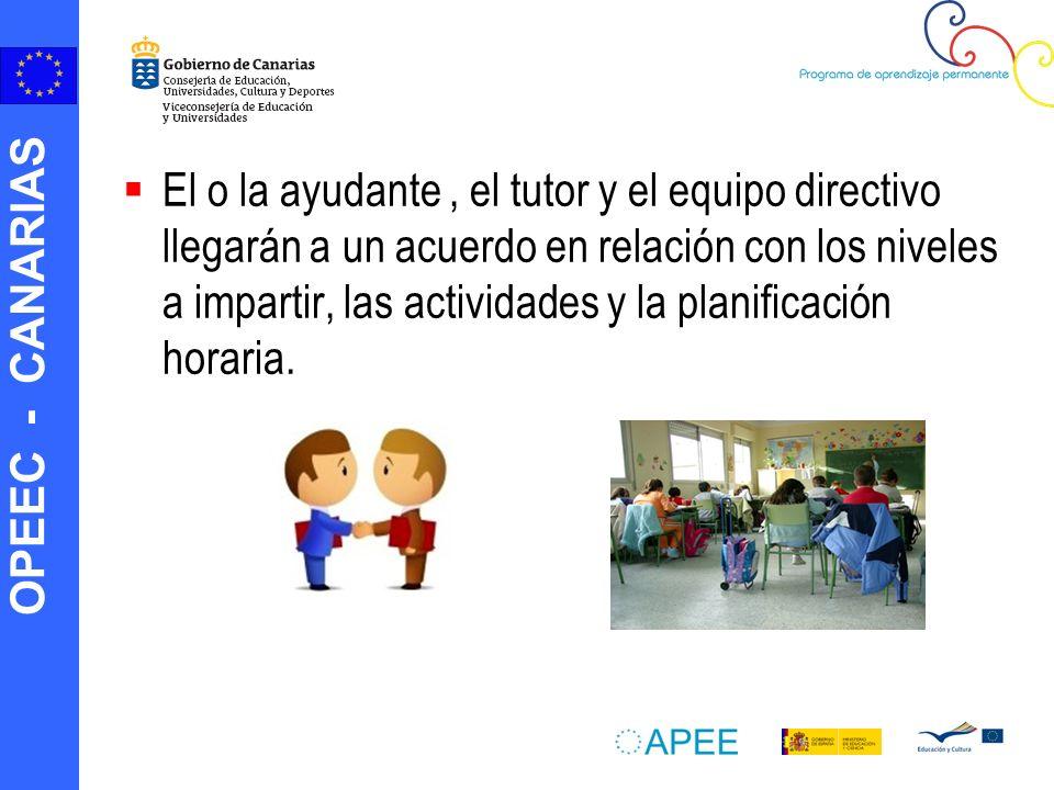 El o la ayudante , el tutor y el equipo directivo llegarán a un acuerdo en relación con los niveles a impartir, las actividades y la planificación horaria.