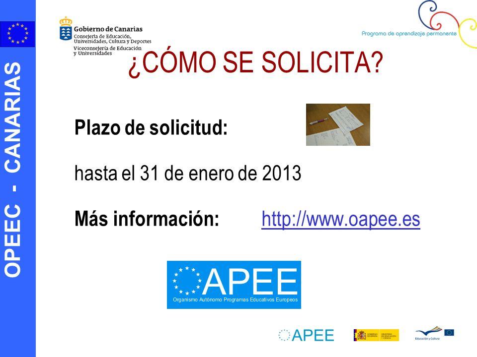 ¿CÓMO SE SOLICITA Plazo de solicitud: hasta el 31 de enero de 2013