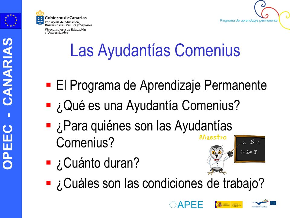 Las Ayudantías Comenius