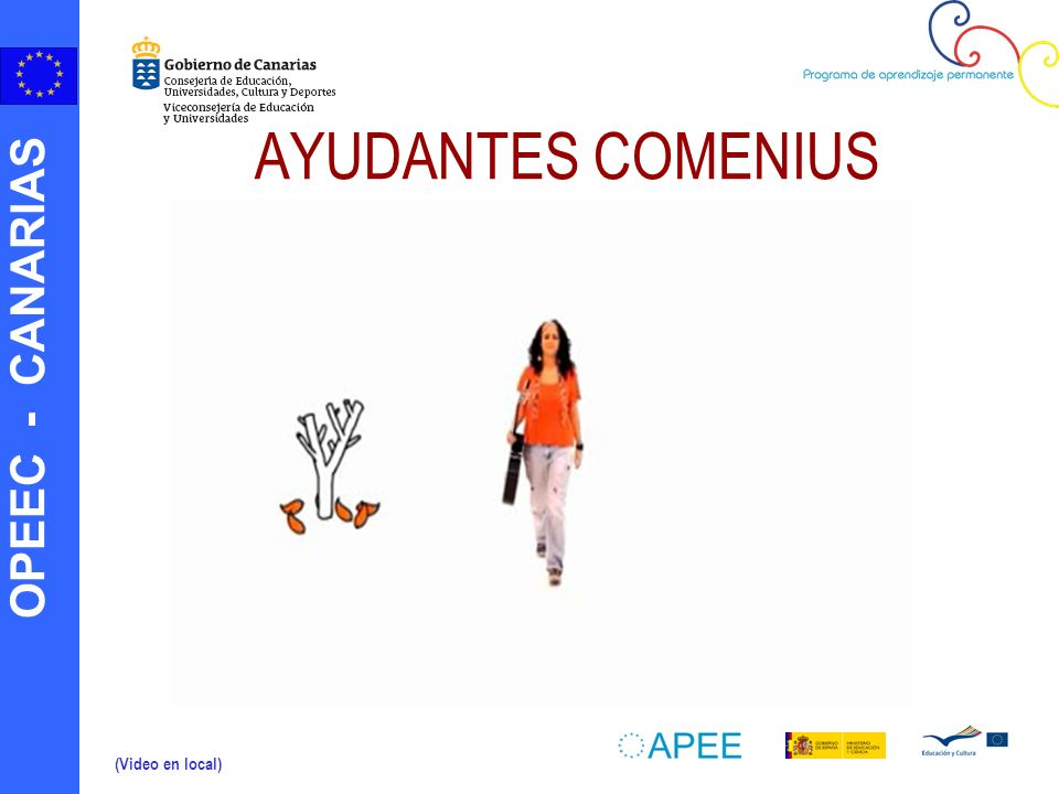 AYUDANTES COMENIUS (Video en local)