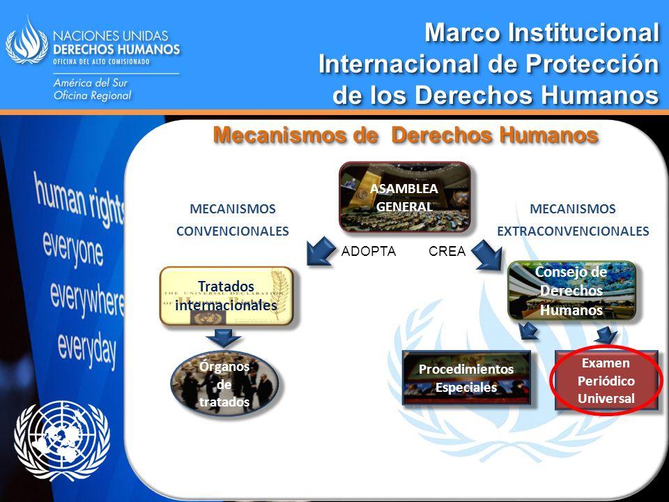 Marco Institucional Internacional de Protección de los Derechos Humanos