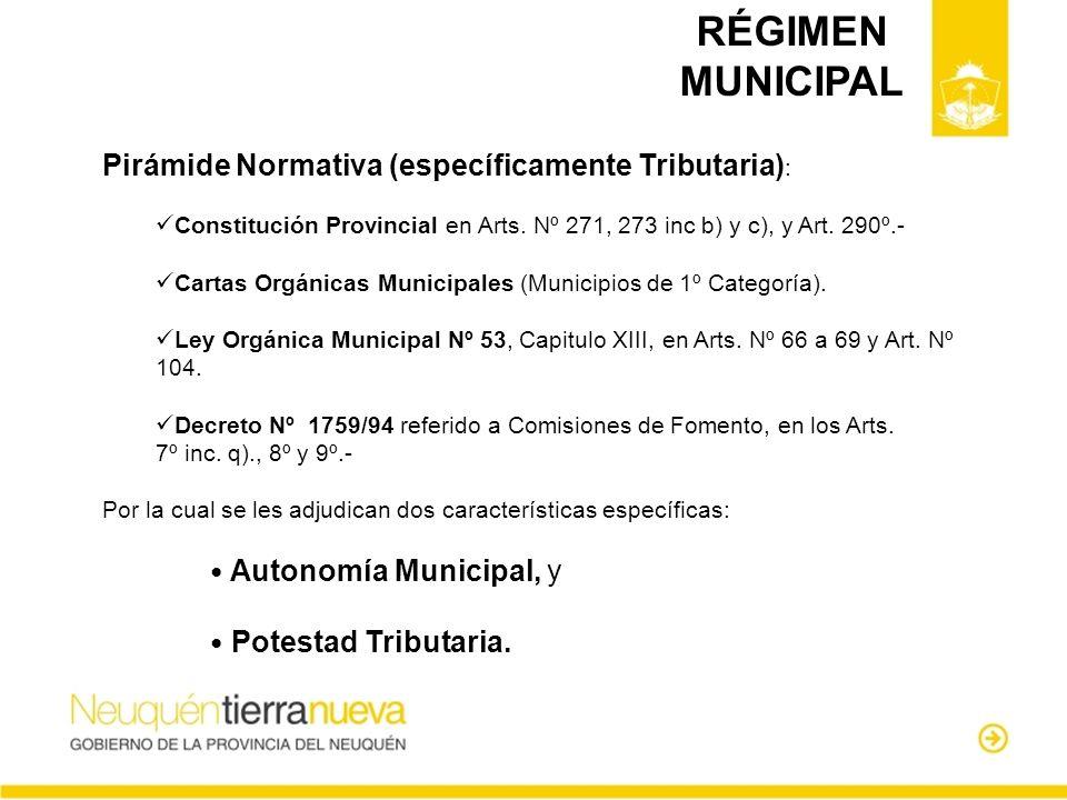 RÉGIMEN MUNICIPAL Pirámide Normativa (específicamente Tributaria):