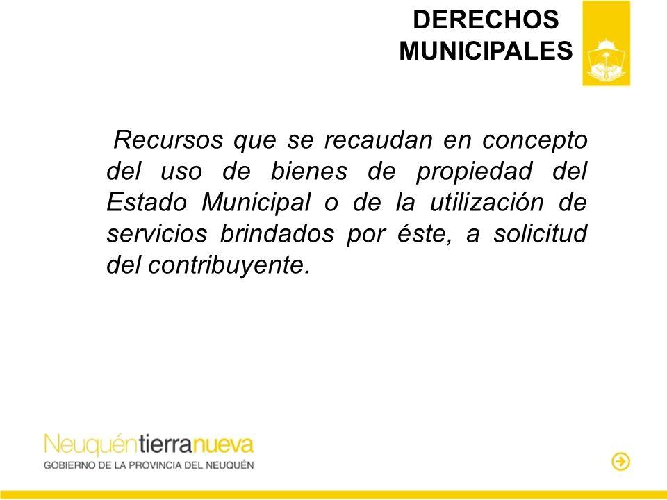 DERECHOS MUNICIPALES