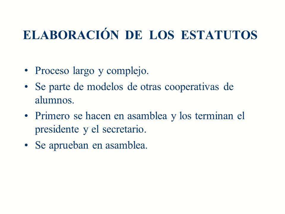 ELABORACIÓN DE LOS ESTATUTOS