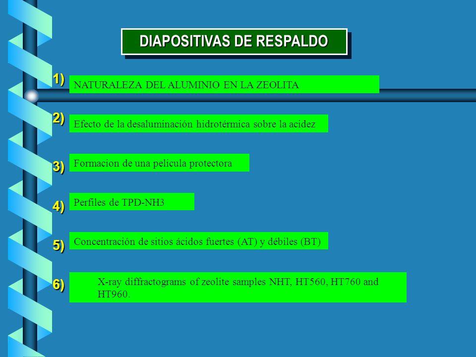 DIAPOSITIVAS DE RESPALDO