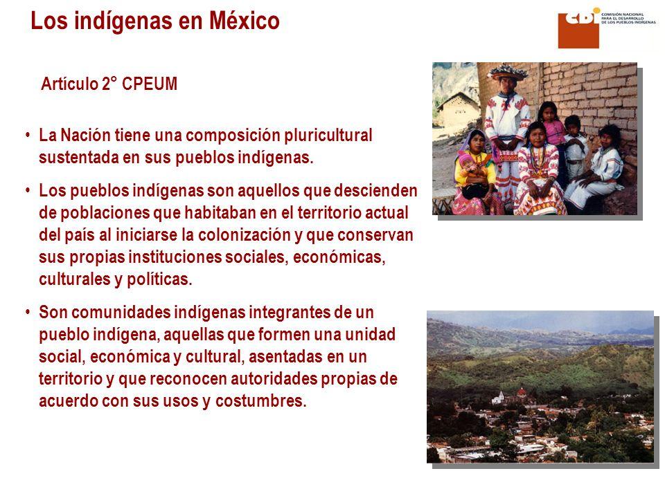 Los indígenas en México