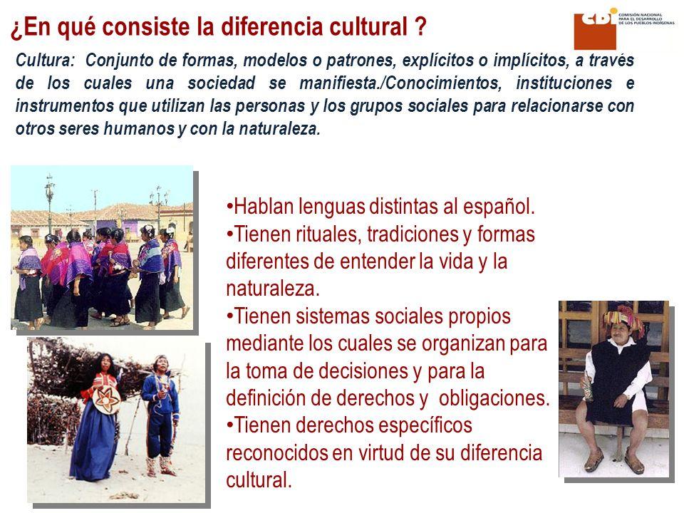 ¿En qué consiste la diferencia cultural