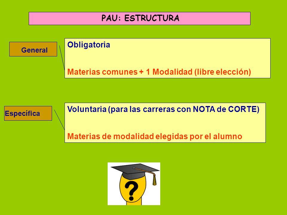 Materias comunes + 1 Modalidad (libre elección)