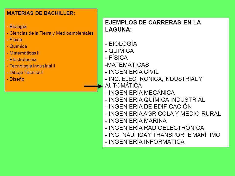 EJEMPLOS DE CARRERAS EN LA LAGUNA: