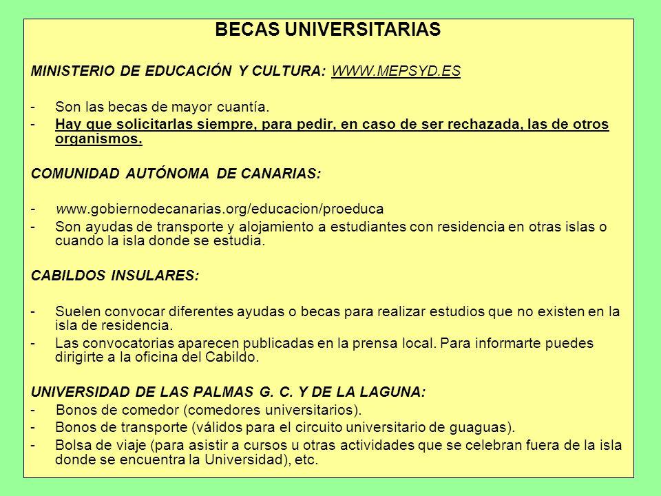 BECAS UNIVERSITARIAS MINISTERIO DE EDUCACIÓN Y CULTURA: WWW.MEPSYD.ES