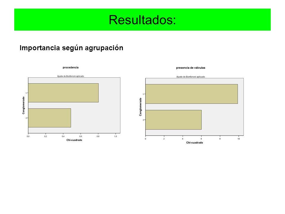 Resultados: Importancia según agrupación