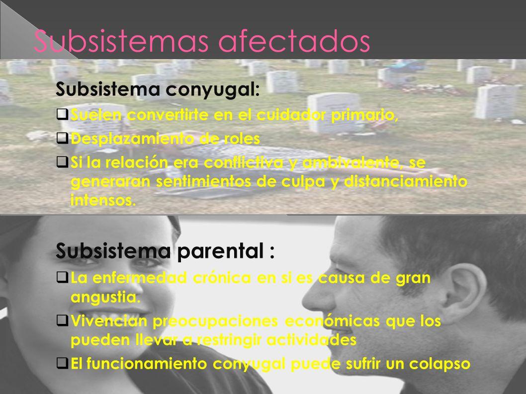Subsistemas afectados