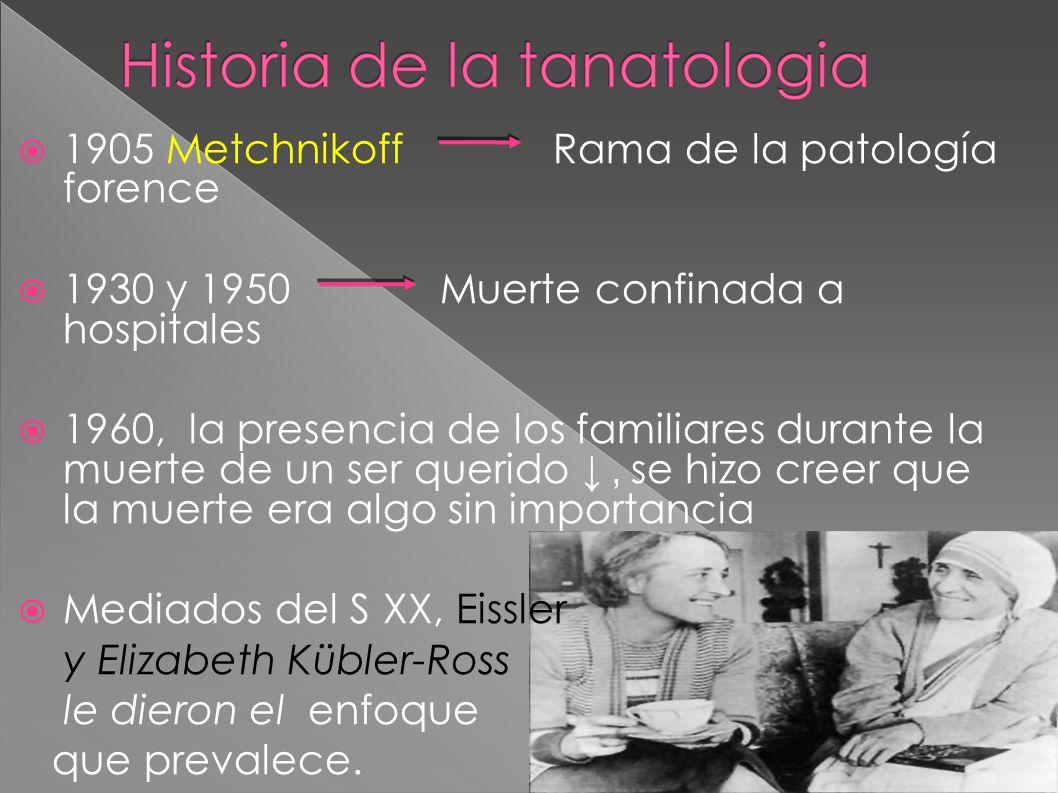 1905 Metchnikoff Rama de la patología forence