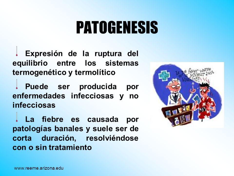 PATOGENESIS Expresión de la ruptura del equilibrio entre los sistemas termogenético y termolítico.
