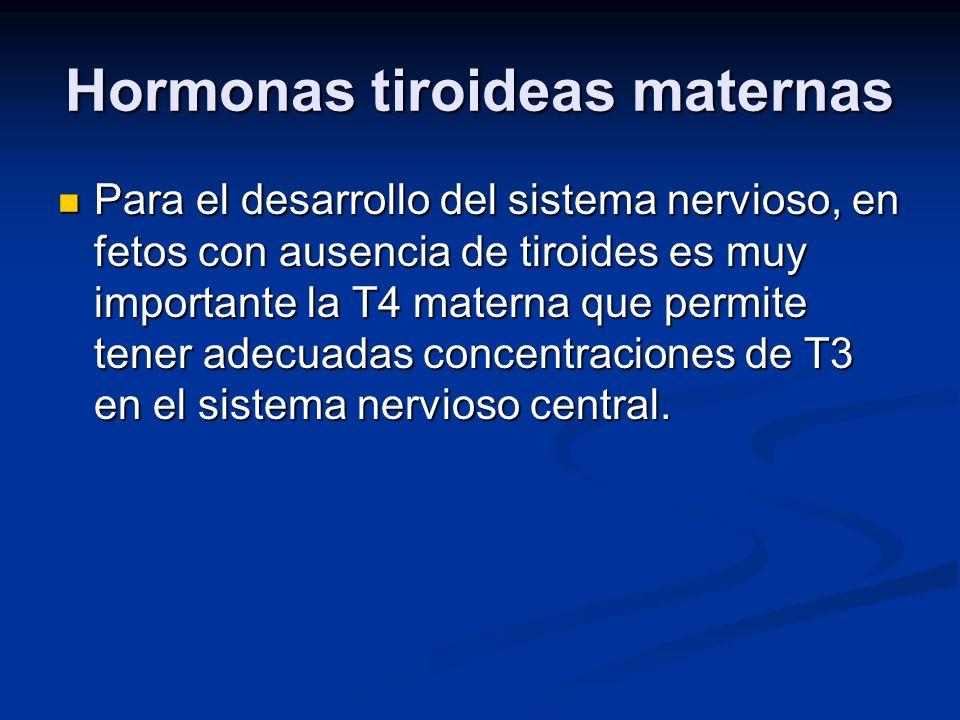 Hormonas tiroideas maternas