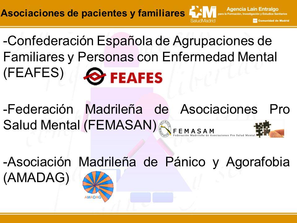 -Federación Madrileña de Asociaciones Pro Salud Mental (FEMASAN)