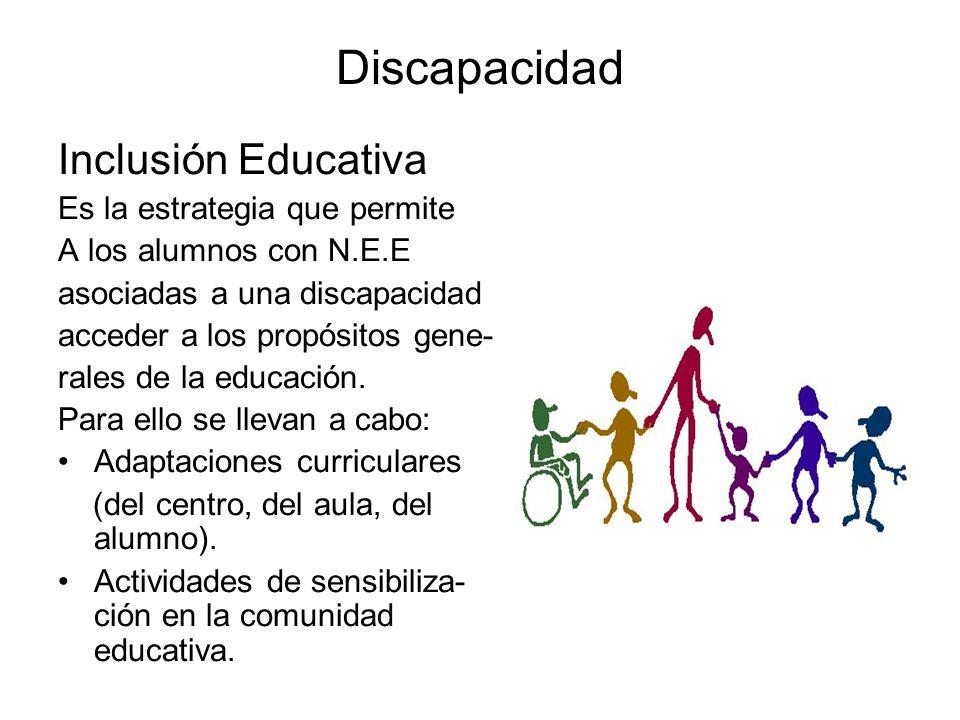 Discapacidad Inclusión Educativa Es la estrategia que permite
