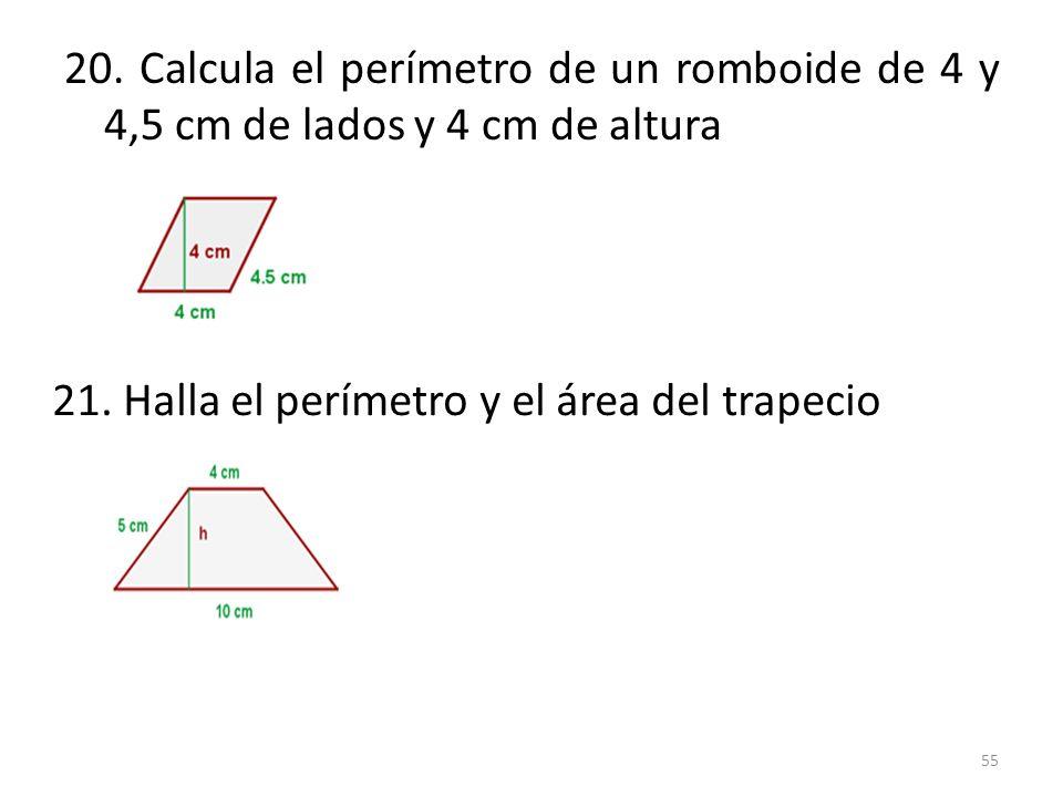 21. Halla el perímetro y el área del trapecio