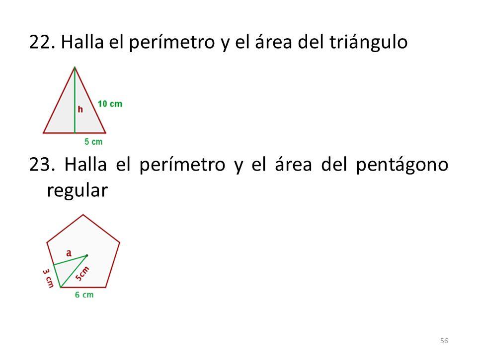 22. Halla el perímetro y el área del triángulo