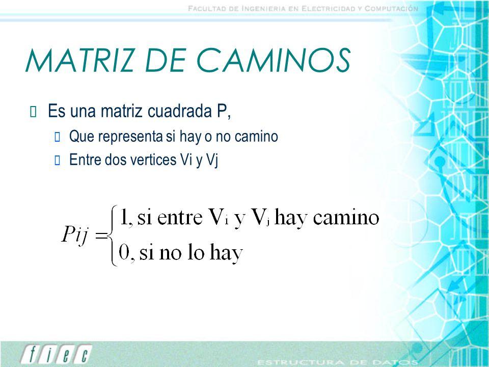 MATRIZ DE CAMINOS Es una matriz cuadrada P,