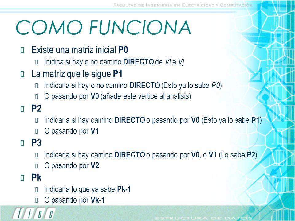 COMO FUNCIONA Existe una matriz inicial P0 La matriz que le sigue P1