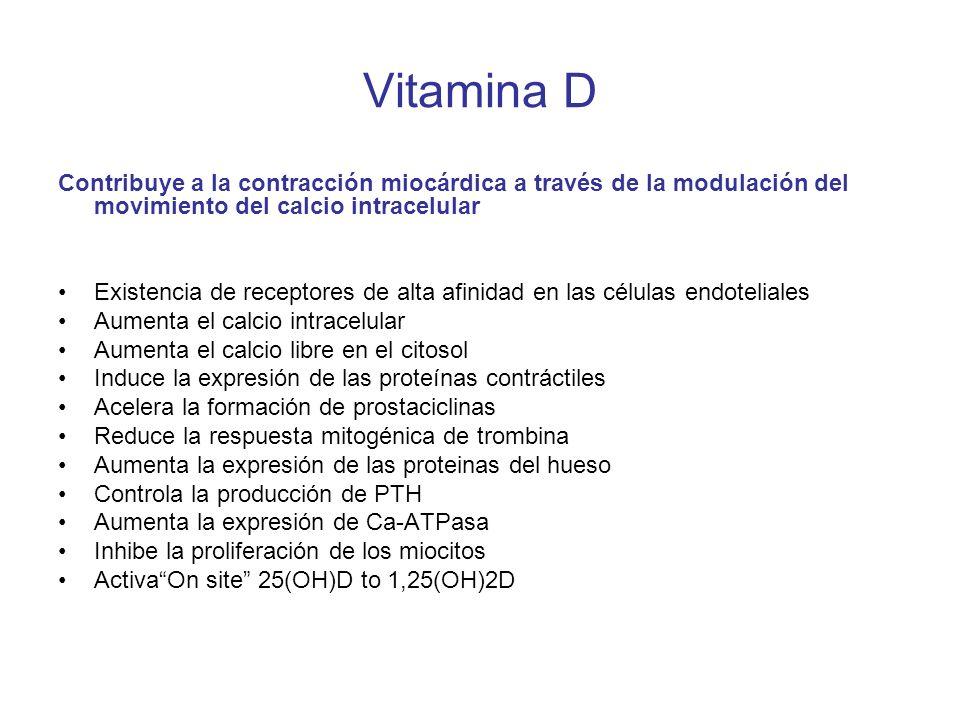 Vitamina D Contribuye a la contracción miocárdica a través de la modulación del movimiento del calcio intracelular.