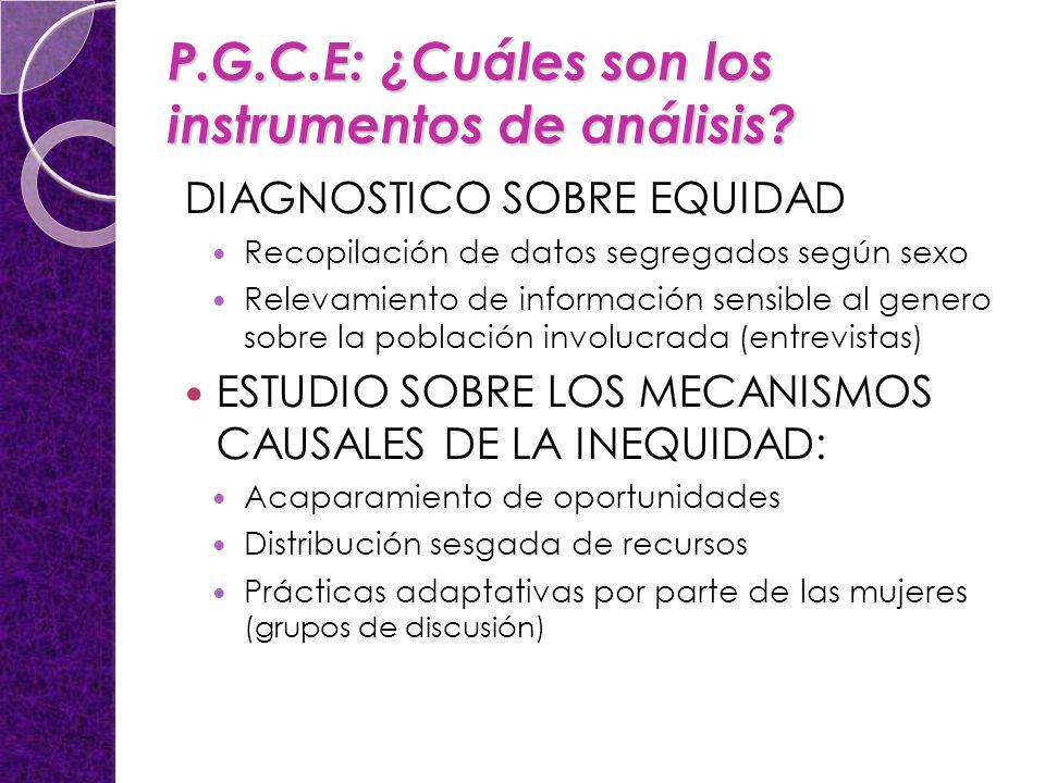 P.G.C.E: ¿Cuáles son los instrumentos de análisis