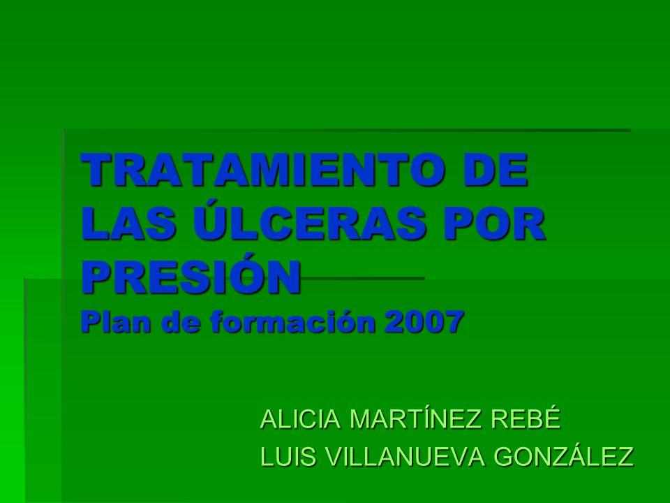 TRATAMIENTO DE LAS ÚLCERAS POR PRESIÓN Plan de formación 2007