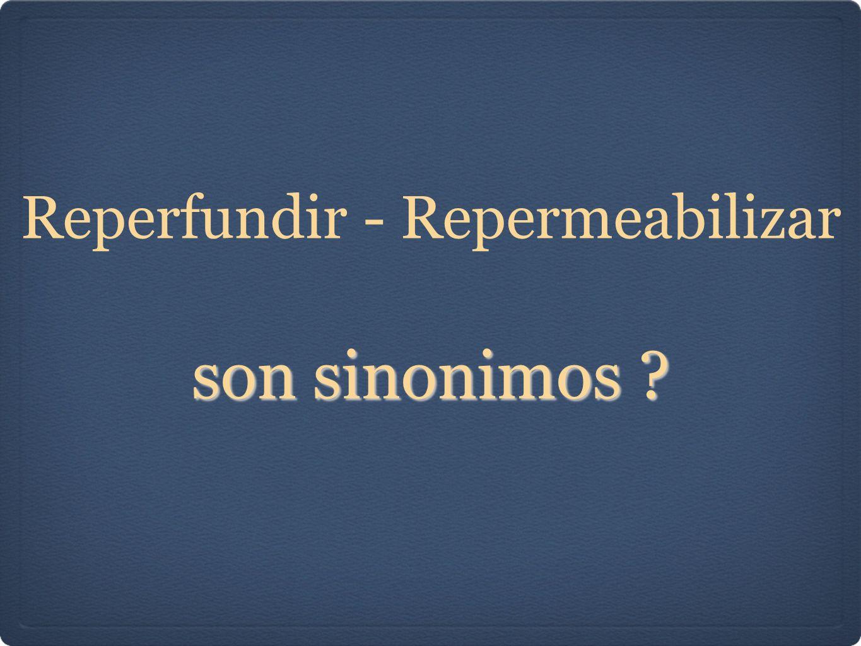 Reperfundir - Repermeabilizar son sinonimos