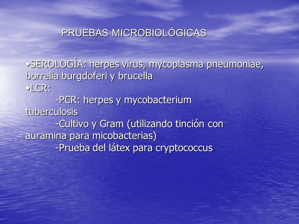 PRUEBAS MICROBIOLÓGICAS