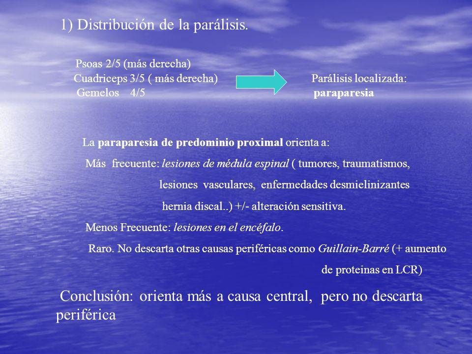 1) Distribución de la parálisis. Psoas 2/5 (más derecha)