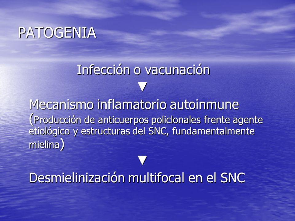 PATOGENIA Infección o vacunación ▼