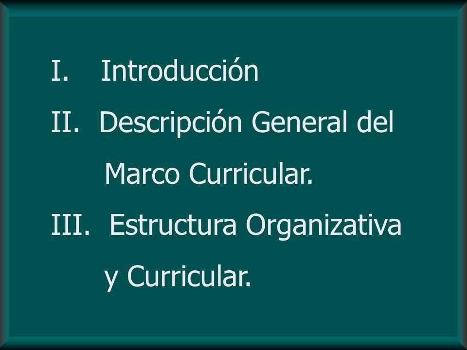 Introducción Descripción General del Marco Curricular. III. Estructura Organizativa y Curricular.