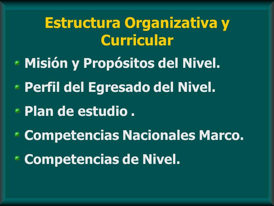 Estructura Organizativa y Curricular