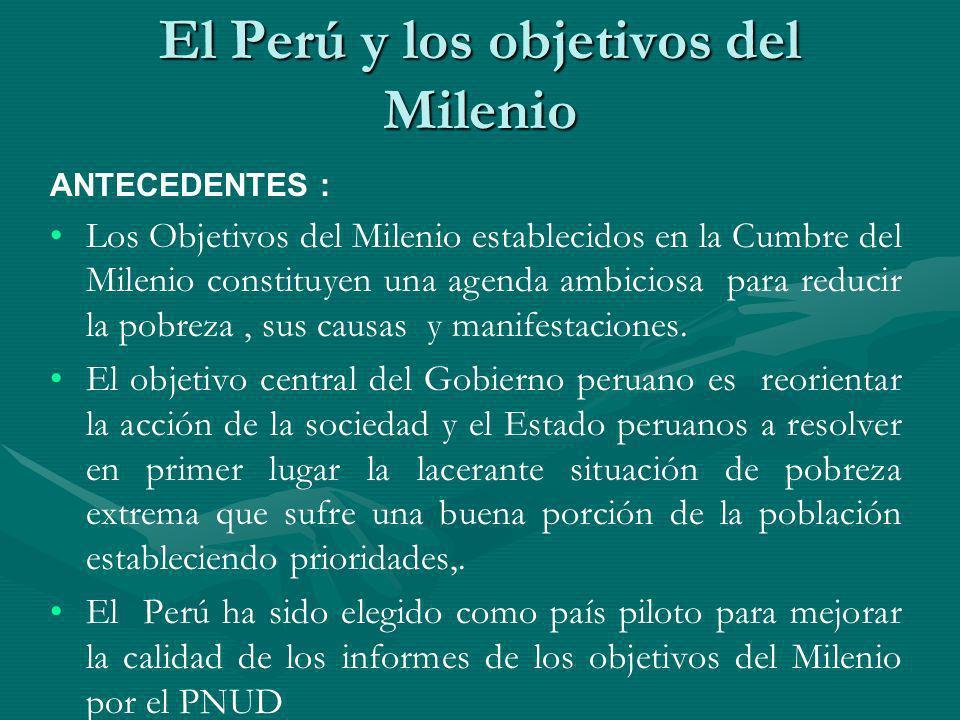 El Perú y los objetivos del Milenio