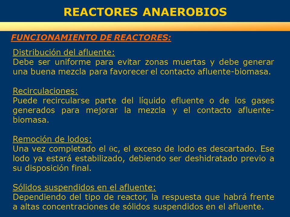 REACTORES ANAEROBIOS FUNCIONAMIENTO DE REACTORES: