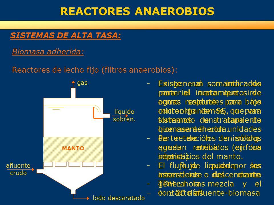 REACTORES ANAEROBIOS SISTEMAS DE ALTA TASA: Biomasa adherida: