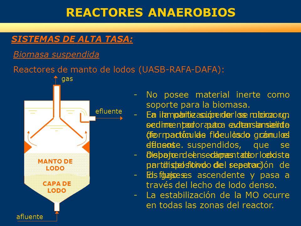 REACTORES ANAEROBIOS SISTEMAS DE ALTA TASA: Biomasa suspendida