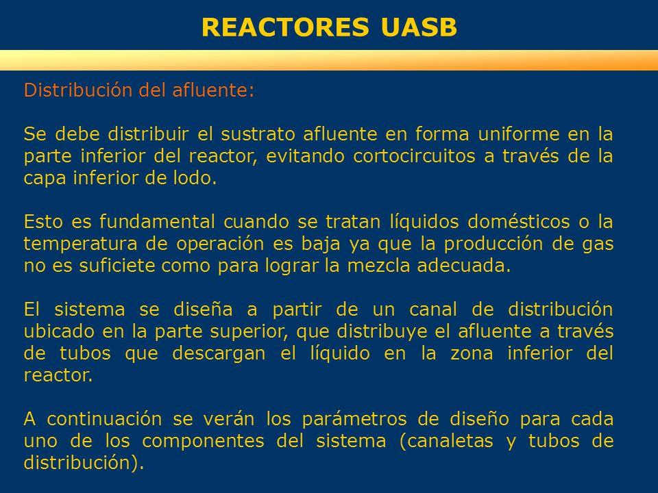 REACTORES UASB Distribución del afluente: