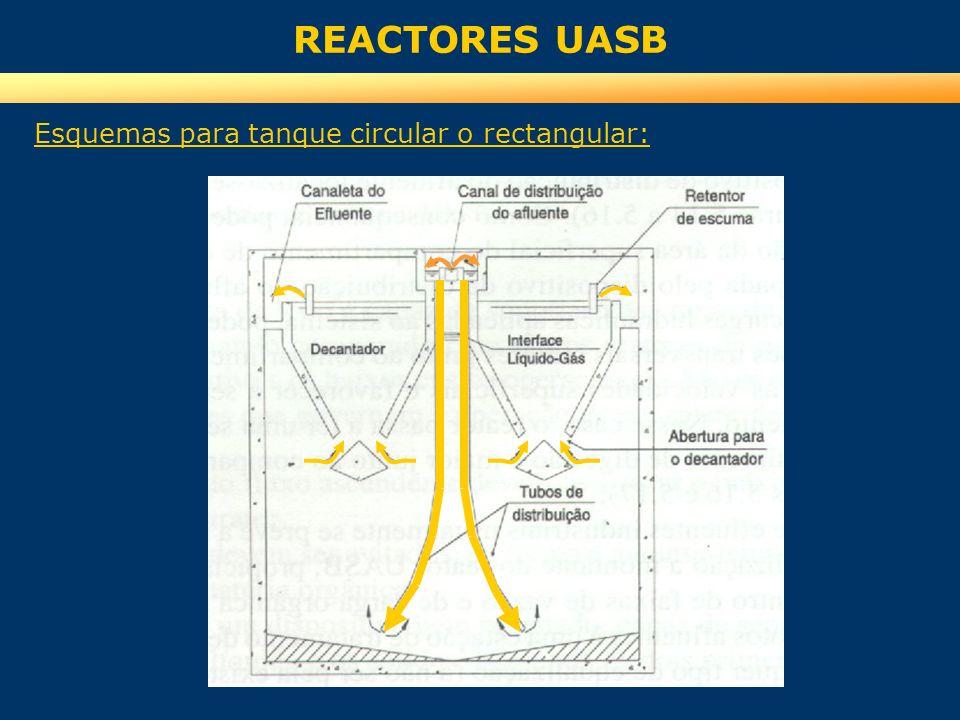 REACTORES UASB Esquemas para tanque circular o rectangular: