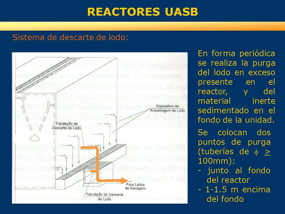 REACTORES UASB Sistema de descarte de lodo:
