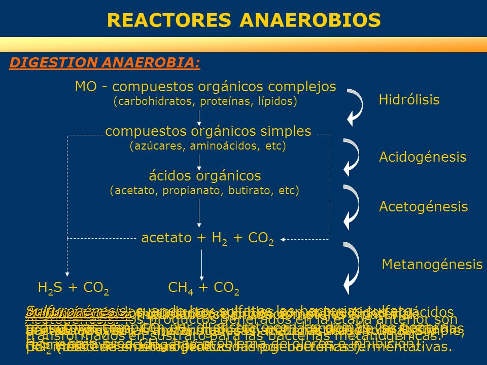 REACTORES ANAEROBIOS DIGESTION ANAEROBIA: