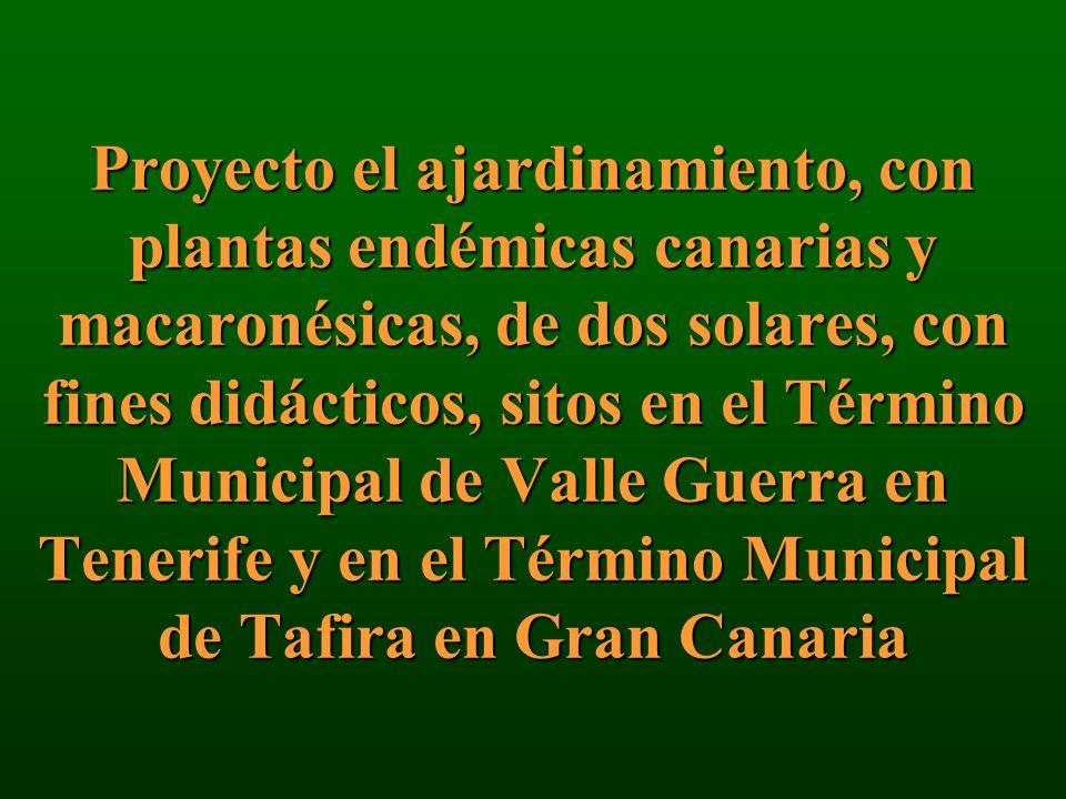 Proyecto el ajardinamiento, con plantas endémicas canarias y macaronésicas, de dos solares, con fines didácticos, sitos en el Término Municipal de Valle Guerra en Tenerife y en el Término Municipal de Tafira en Gran Canaria
