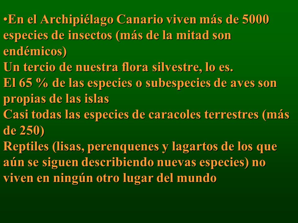 En el Archipiélago Canario viven más de 5000 especies de insectos (más de la mitad son endémicos) Un tercio de nuestra flora silvestre, lo es.