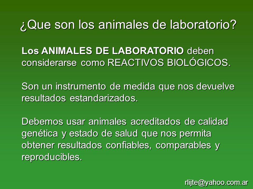 ¿Que son los animales de laboratorio