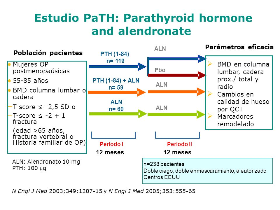 Estudio PaTH: Parathyroid hormone and alendronate