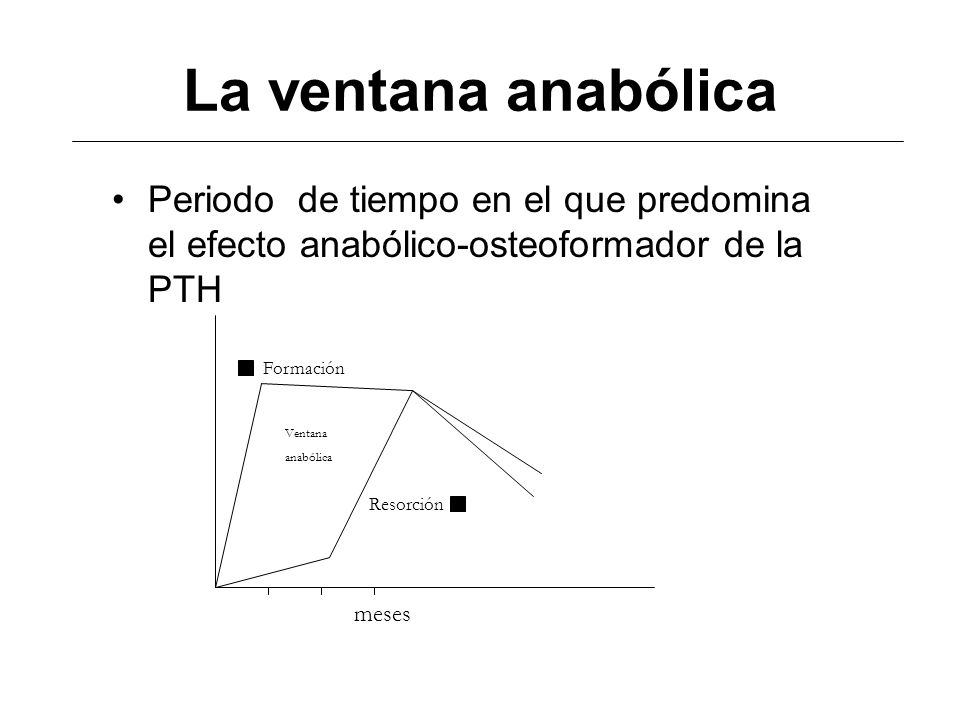 La ventana anabólica Periodo de tiempo en el que predomina el efecto anabólico-osteoformador de la PTH.